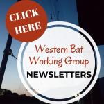 WBN newsletters logo