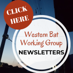 WBN newsletters logo